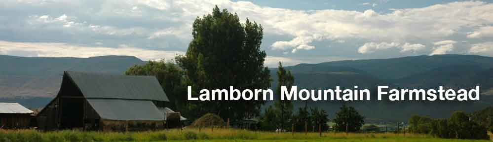 Lamborn Mountain Farmstead
